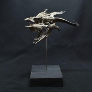 Goblin, crâne de dragon
